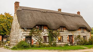 Thatched house with plants growing up the wall