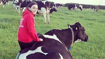 Anna Bowen leaning on cow in field of cows