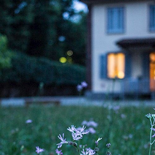 View of house at night t Alternative text Horizontal Crophrough grass and flowers