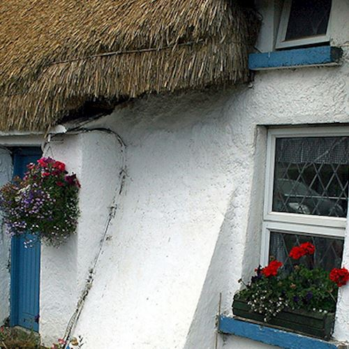 white cottage with thatched roof
