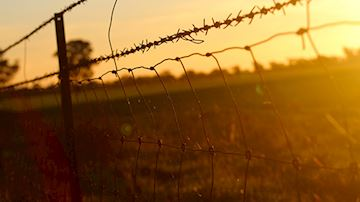 Barbed wire fence across field