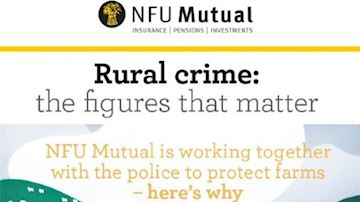 Crop of rural crime infographic
