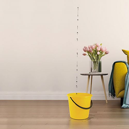 Yellow sofa with throw draped over arm, yellow bucket catching water leaking from ceiling