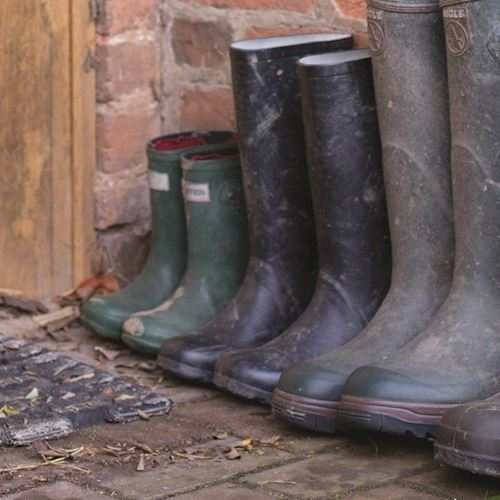 A family's Wellington boots in a row