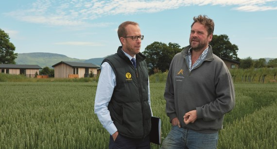 Image result for nfu mutual diversification images